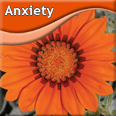 Products to Treat Anxiety