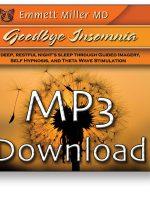 Goodbye Insomnia MP3